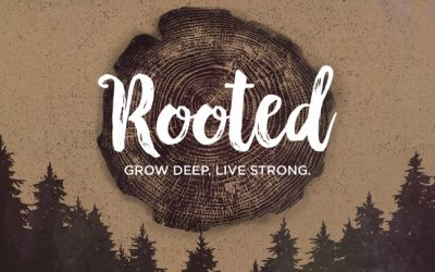 Rooted:Prune